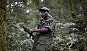 Ituri : un présumé milicien arrêté à Bunia en possession d'une arme à feu et d'un chargeur garni.